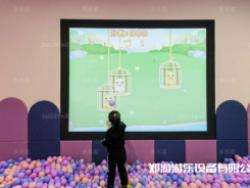儿童游乐设备厂家盘点0-8岁的孩子喜欢的几种儿童游乐场设备